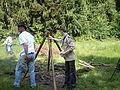 20090613_1612_PICT0100.jpg